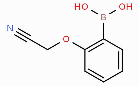 2-Cyanomethoxyphenylboronic acid