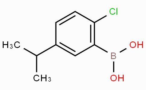 (2-Chloro-5-isopropylphenyl)boronic acid