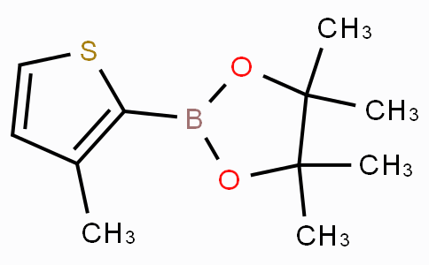 3-Methylthiophene-2-boronic acid pinacol ester