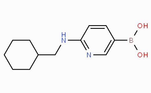 2-(Cyclohexylmethylamino)pyridine-5-boronicacid