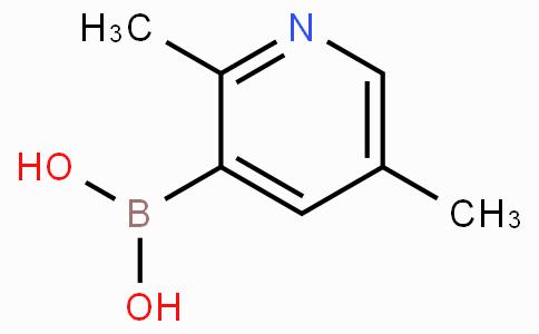 2,5-Dimethylpyridine-3-boronicacid