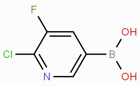 2-Chloro-3-fluoropyridine-5-boronicacid