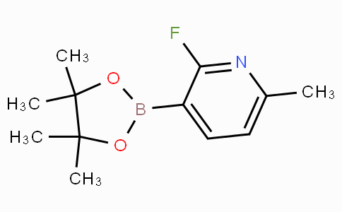 2-Fluoro-6-methylpyridine-3-boronicacidpinacolester