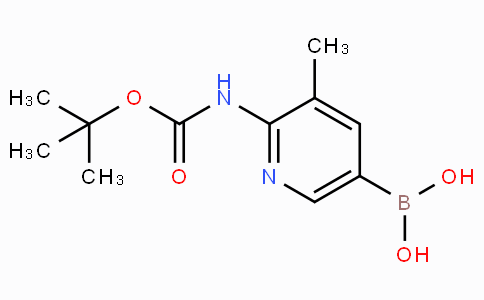 2-tert-Butyloxycarbonylamino-3-methylpyridine-5-boronicacid
