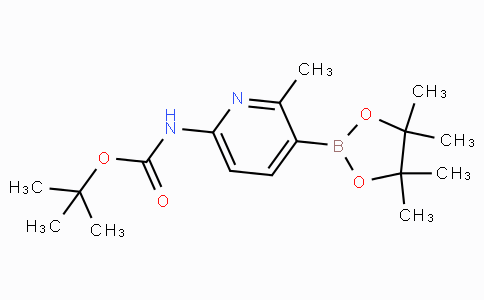 6-tert-Butyloxycarbonylamino-2-methylpyridine-3-boronicacidpinacolester