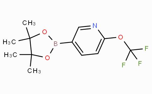 6-Trifluoromethoxypyridine-3-boronicacidpinacolester