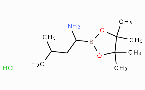 BoroLeu-Pinacol-HCl