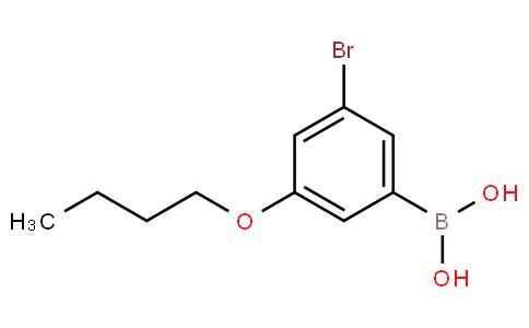 3-溴-5-丁氧基苯硼酸