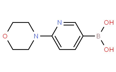 6-(4-吗啉基)-3-吡啶硼酸