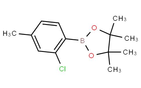 2-Chloro-4-methylphenylboronic acid pinacol ester