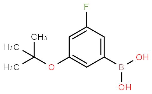 3-Fluoro-5-(tert-butoxy)phenylboronic acid