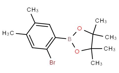 2-Bromo-4,5-dimethylphenylboronic acid pinacol ester