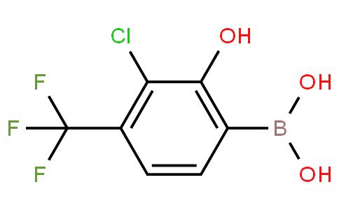 3-Chloro-2-hydroxy-4-(trifluoromethyl)phenylboronic acid