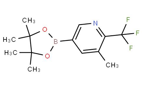 3-Methyl-2-trifluoromethylpyridine-5-boronic acid pinacol ester