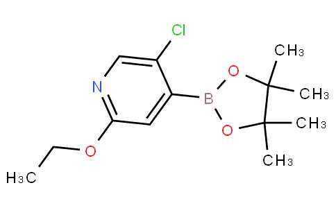 5-Chloro-2-ethoxypyridine-4-boronic acid pinacol ester