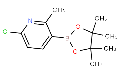6-Chloro-2-methylpyridine-3-boronic acid pinacol ester