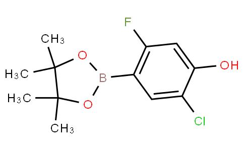5-Chloro-2-fluoro-4-hydroxyphenylboronic acid pinacol ester