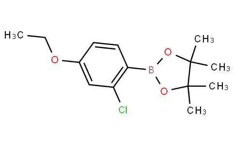 2-Chloro-4-ethoxyphenylboronic acid pinacol ester