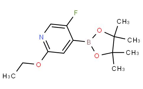 5-Fluoro-2-(ethoxy)-pyridine-4-boronic acid pinacol ester