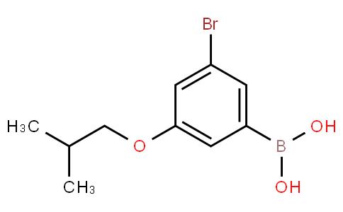 3-Bromo-5-isobutoxyphenylboronic acid