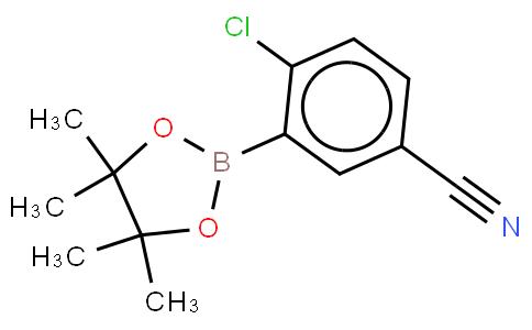 2-Chloro-5-cyanophenyl boronic acid pinacol ester