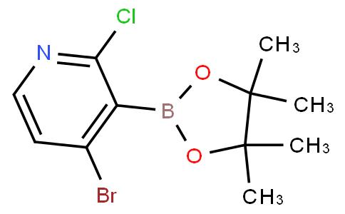 4-Bromo-2-chloropyridine-3-boronic acid pinacol ester