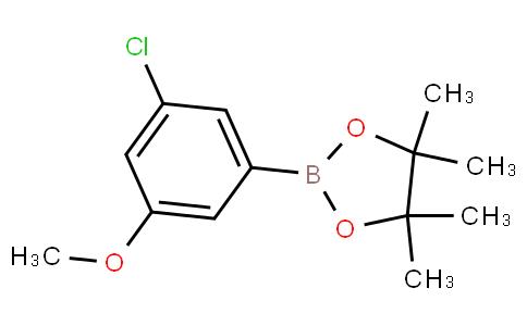 3-Chloro-5-methoxyphenylboronic acid pinacol ester