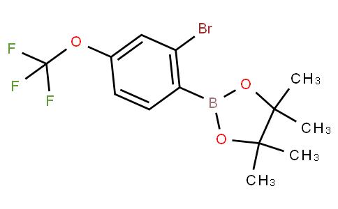 2-Bromo-4-(trifluoromethoxy)phenylboronic acid pinacol ester