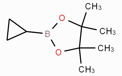 Cyclopropylboronic acid pinacol ester