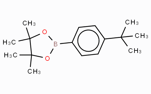 4-叔丁基苯硼酸频那醇酯