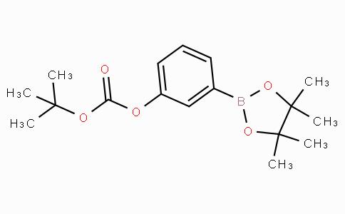 3-(4,4,5,5-四甲基-1,3,2-二氧硼戊环-2-基)苯基碳酸叔丁酯
