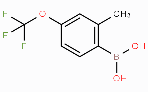2-Methyl-4-(trifluoromethoxy)benzeneboronic acid