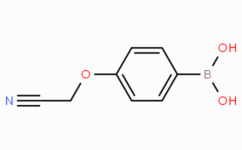 4-Cyanomethoxyphenylboronic acid