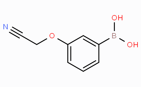 3-Cyanomethoxyphenylboronic acid