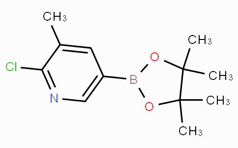 2-Chloro-3-methylpyridine-5-boronic acid pinacol ester