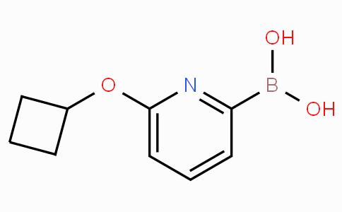 6-(Cyclobutoxy)pyridine-2-boronicacid