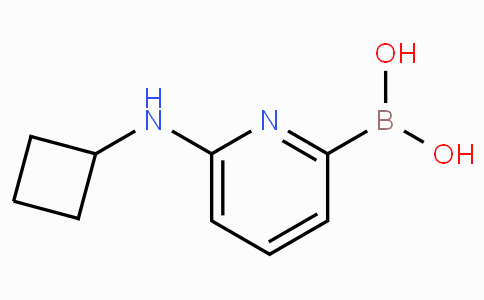 6-(Cyclobutylamino)pyridine-2-boronicacid