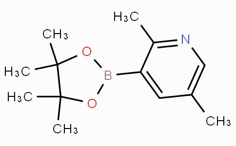 2,5-Dimethylpyridine-3-boronicacidpinacolester
