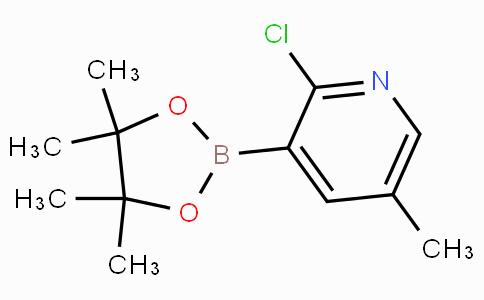 2-Chloro-5-methylpyridine-3-boronicacidpinacolester