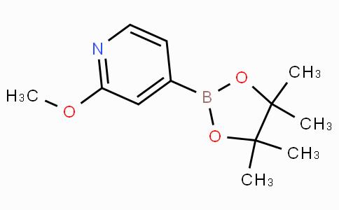 2-Methoxypyridine-4-boronicacidpinacolester