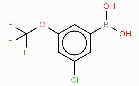 3-氯-5-(三氟甲氧基)苯基硼酸
