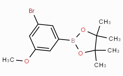 3-Bromo-5-methoxyphenylboronic acid pinacol ester