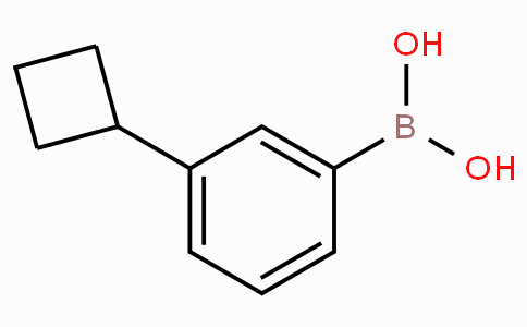 3-Cyclobutylphenylboronic acid
