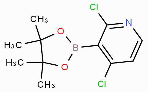 2,4-Dichloropyridine-3-boronic acid pinacol ester