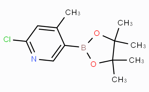 2-Chloro-4-methyl-5-(tetramethyl-1,3,2-dioxaborolan-2-yl)pyridine