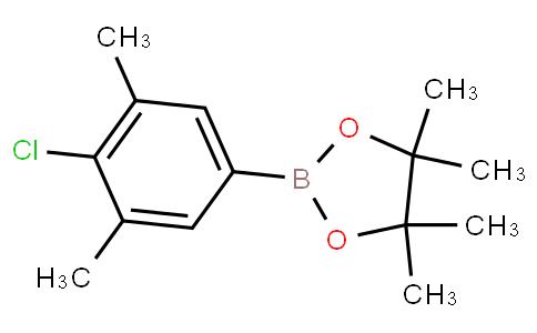 3,5-Dimethyl-4-chlorophenylboronic acid pinacol ester
