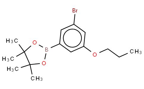 3-Bromo-5-propoxyphenylboronic acid, pinacol ester