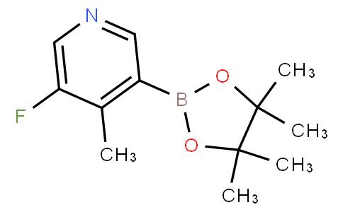 5-Fluoro-4-picoline-3-boronic acid pinacol ester