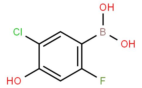 5-Chloro-2-fluoro-4-hydroxyphenylboronic acid