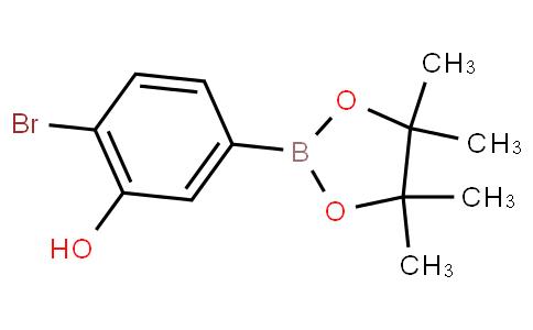 4-Bromo-3-hydroxyphenylboronic acid pinacol ester